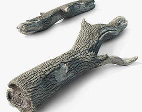 3D asset Old tree trunk