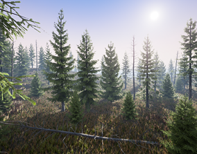 Realistic Spruce Fir Trees for games 3D asset