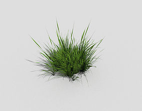low poly grass 3D asset low-poly