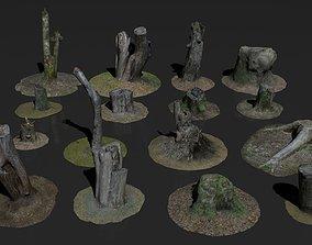 3D asset Photoscanned stumps pack