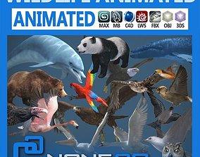 3D model animated Pack - Wildlife