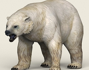 Game Ready Polar Bear 3D asset