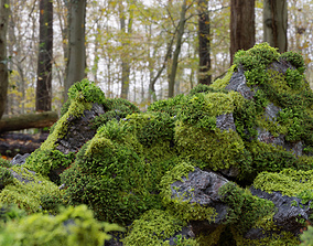 Moss 7 Species and Stones - PBR Asset 3D model