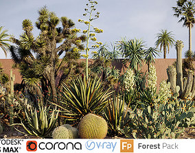 flaccida 3D Tropical desert plant collection