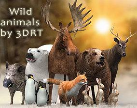 3DRT - Wild Animals animated