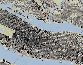New York Manhattan Topography 3D street map