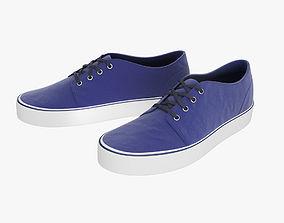 Vans Shoes 3D asset