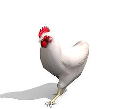 3D asset White Chicken - Animated
