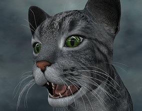 3D model UVWC-005 Cat Textures Only cat