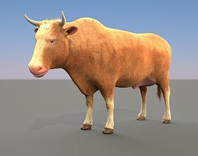 Cow Male and female plus animation 3D model