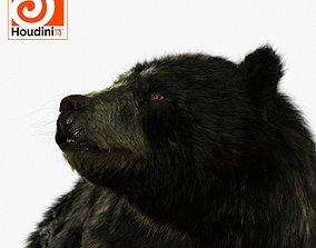 3D black bear RIGGED