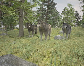 3D forest wolfs rigged animated