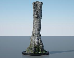 Tree Trunk - 11 wood 3D model