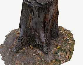 low-poly 3D scan BPR tree stump 03