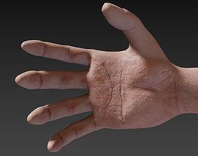 3D asset First Person Female Hand