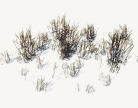 FREE Ground Plants Sample Model 3D asset