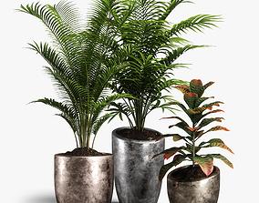 3D model plants set 09