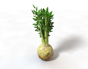Celery with roots 3D asset