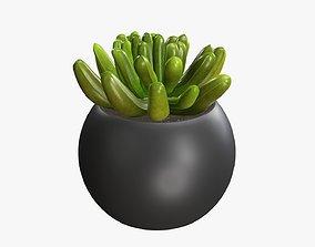 3D model Potted plant decorative 01