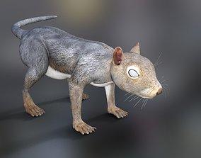Rodents Squirrels 3D model