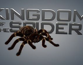 Spider tarantula 3D animated