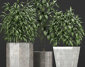 3D model Plants Collection 09