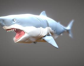Shark 3D asset
