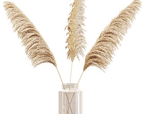 Dry branches of pampas grass in glass vase 3D model