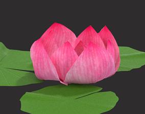 3D model Nymphaea Nelumbo Lotus Flower