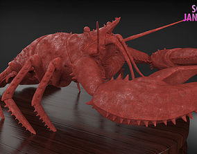 Realistic Lobster Timelapse and Model