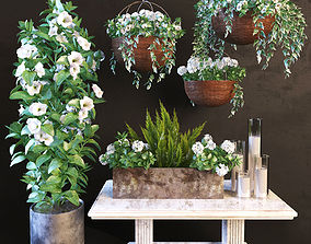 Hanging pot flowers 3D model