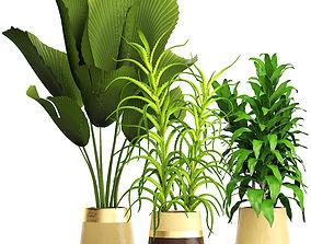 3D model Plant set