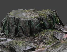 3D model Stump fabric