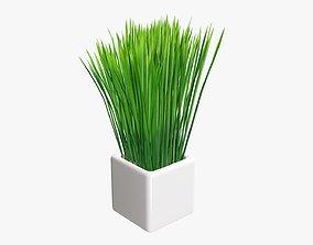 3D Long grass potted decorative