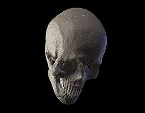 Anatomically Correct Realistic Human Skull 3D model