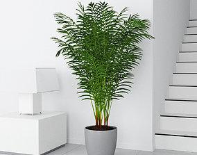 3D model Palm 14