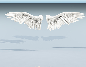 3D model rigged Angle or bird wings
