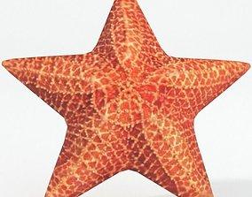 Starfish 3D asset realtime