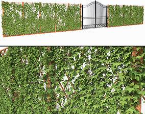 Ivy fence 3D