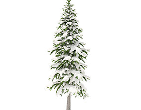 Fir Tree with Snow 3point4m 3D model