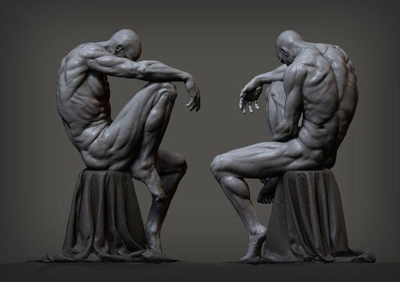 Sitting male - anatomy