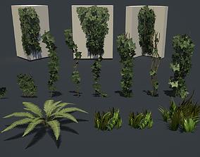Vegetation 3D asset game-ready