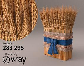 cosiness Wheat 3D model PBR