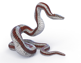 Rigged Rosy Boa 3D model
