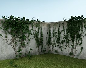 Ivy on the wall 01 3D model