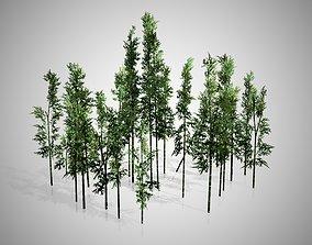3D model Bamboo Cluster
