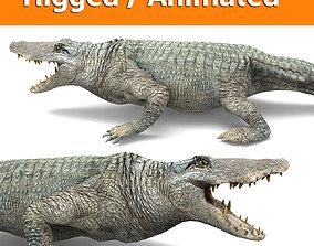 animated crocodile Rigged animated 3D Model