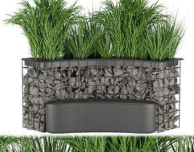 Collection plant vol 141 3D
