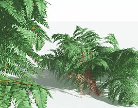 EVERYPlant Common Bracken 12 --21 Models-- 3D