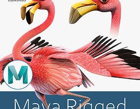 Flamingo bird 3D asset rigged